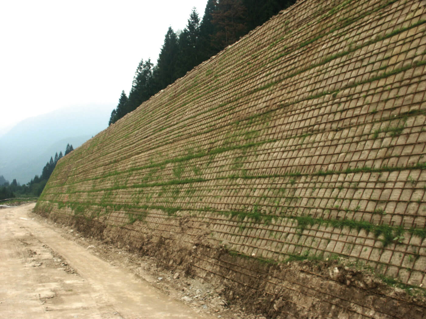 barriera paramassi in terra rinforzata s p 56 edilfloor